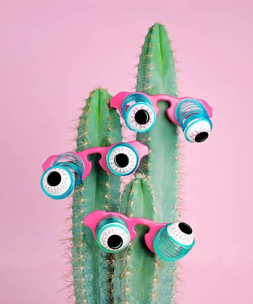 cactus met ogen