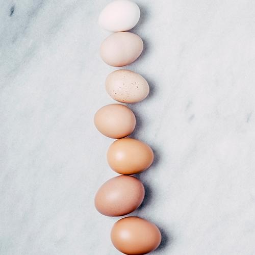rij eieren