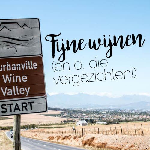 f20_maartje-winery_hp