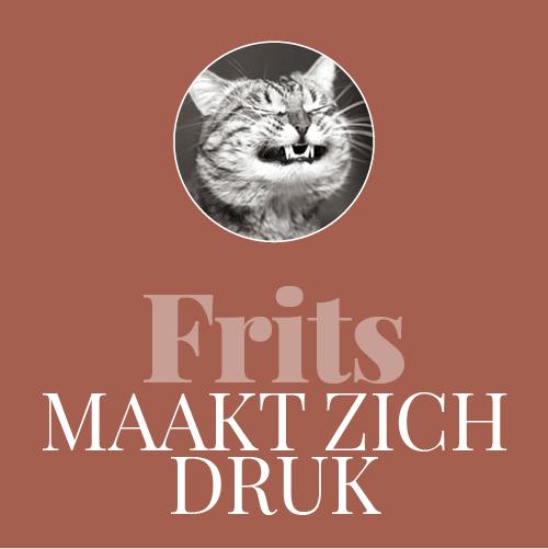 f5_frits