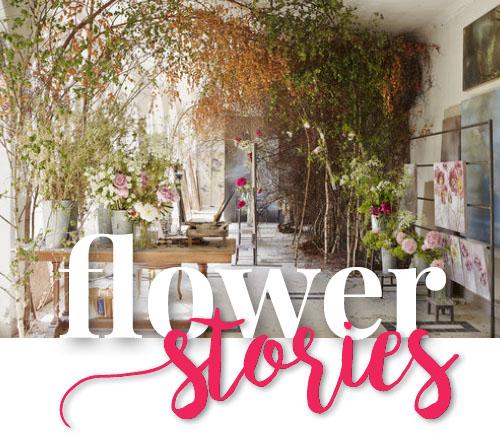 hp_flower-stories_kl