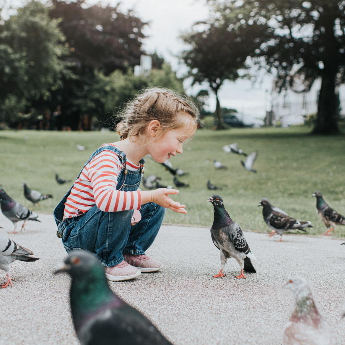 meisje-klein-vogels-lachen-natuur-kleuter-kind-kindje-vogels-duiven-duif-aaien