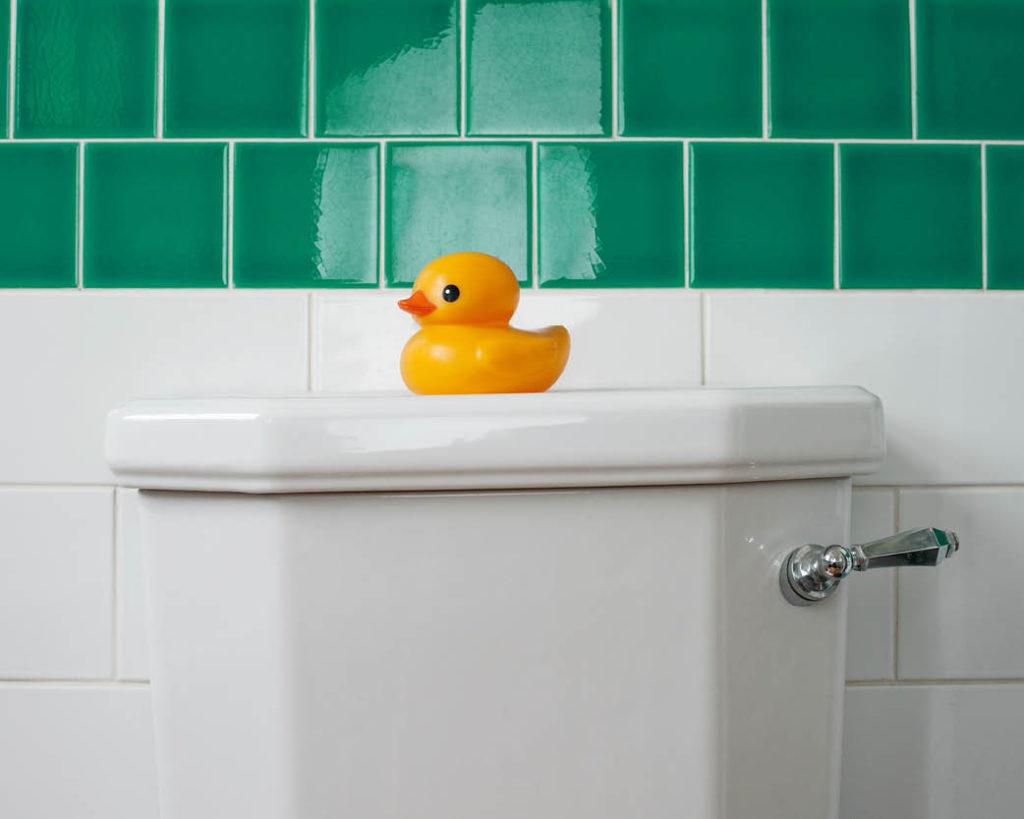 Wc eend op toilet
